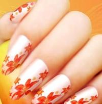 Китайская роспись ногтей – маникюр во