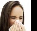 Аллергия на плесень - следите за окружающей средой