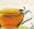 Зеленый чай: польза и вред популярного напитка