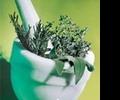 Гомеопатические лекарства: в чем их польза?