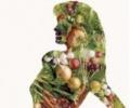 Овощная диета - нуждаются ли овощи в обработке?